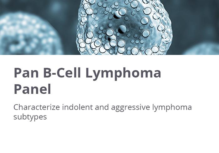 HTG EdgeSeq Pan B-Cell Lymphoma Panel